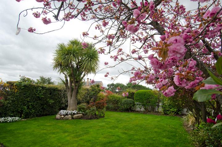 Jardín ático de lujo