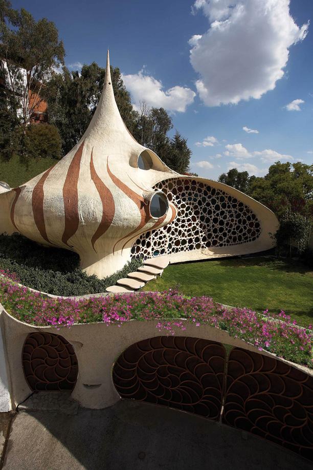 Terraza orgánica casa Nautilus